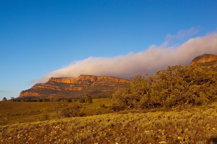 The sun shines down on Rawnsley Bluff and Wilpena Pound in the Australian Outback.