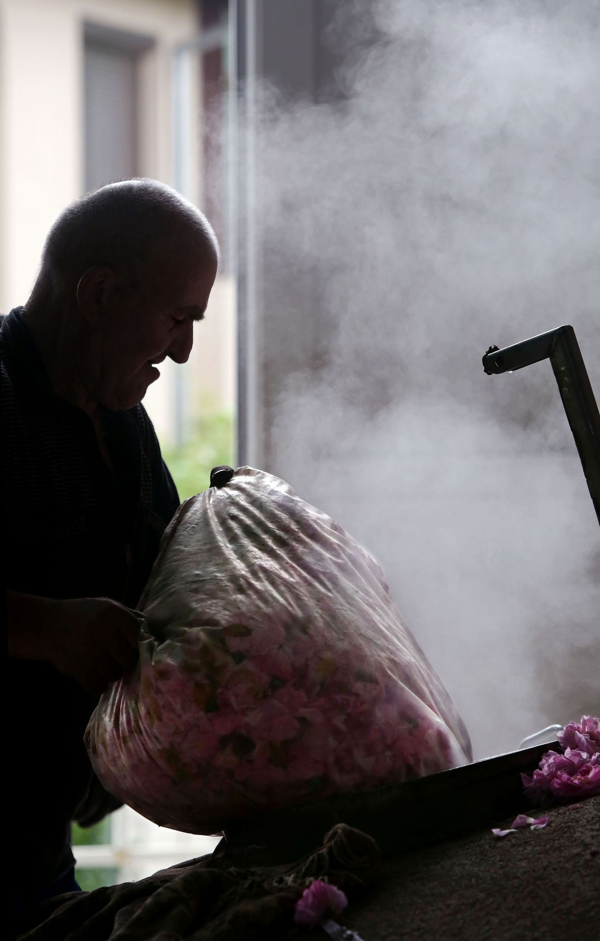 Marin Stoyanov loads bags of roses into cauldrons at Lema Distillery in Kazanlak.
