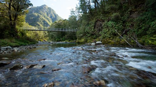 9 'Great Walks' of New Zealand: Beaches, Forest, and Mountains By Foot