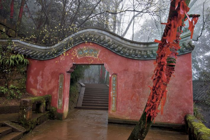 On mist-shrouded Mengding Mountain, an archway leads to the Royal Tea Garden, with its Seven Tea ...