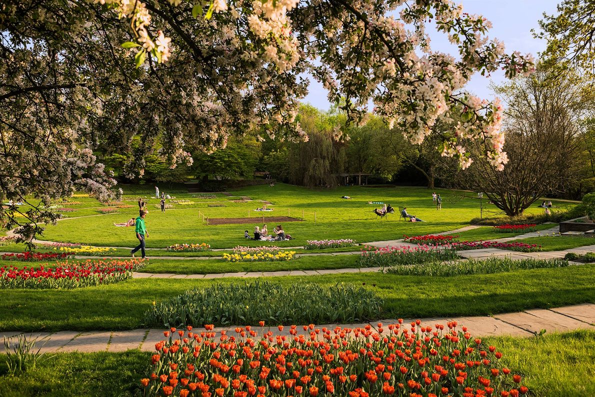 Grugapark in Essen features a botanic garden, a zoo, playgrounds, and outdoor sculptures.
