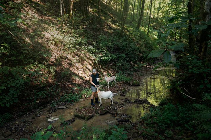 Rae Garringer, pictured with goats Trillium and Thistle, now lives in Kentucky. Though COVID-19 has demanded ...