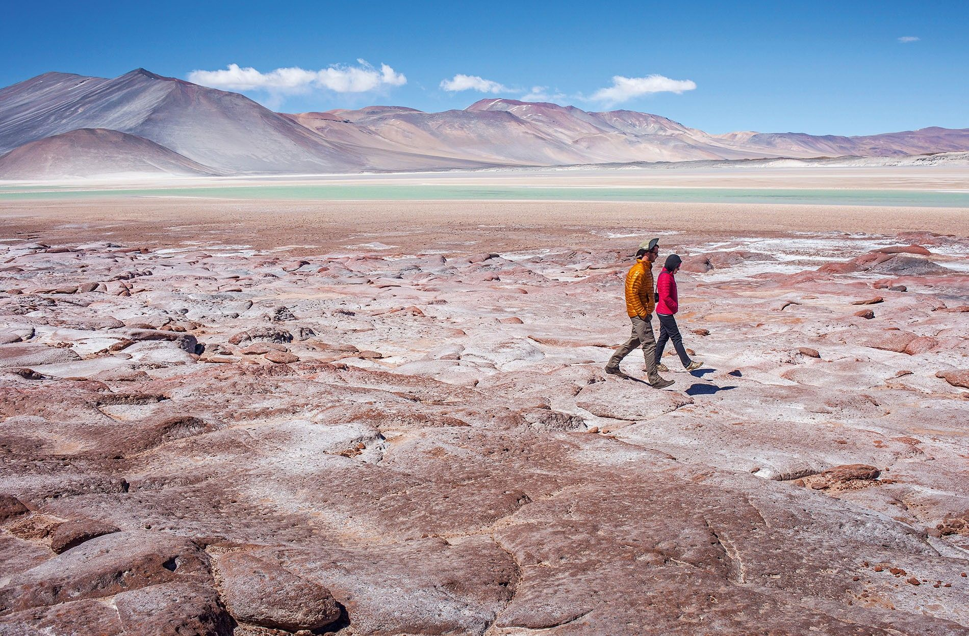 Experiencing another kind of life in the Atacama Desert