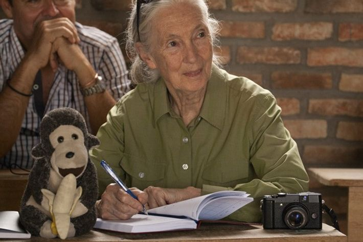 Dr Jane Goodall and Mr H at a Roots & Shoots chapter meeting in Bujumbura, Burundi.