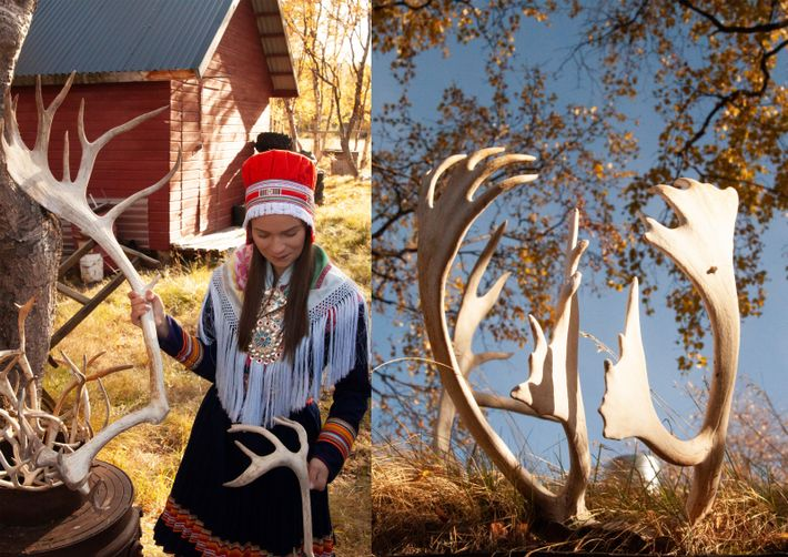 Reindeer herds are the gravitation point for the traditionally nomadic Sami, who are spread across northern ...