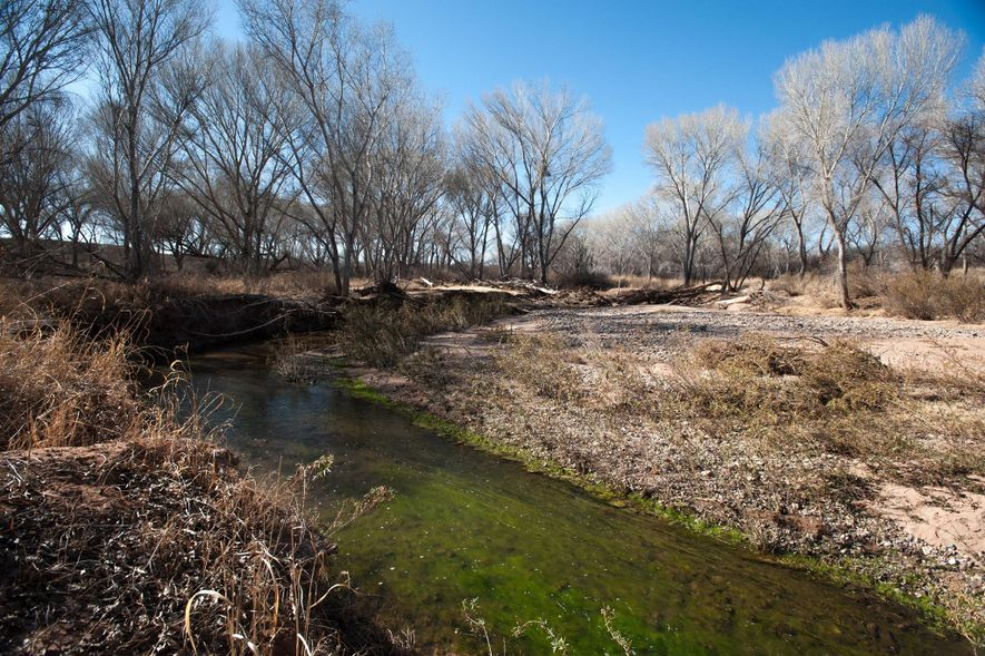We pump too much water out of the ground—and that's killing our rivers
