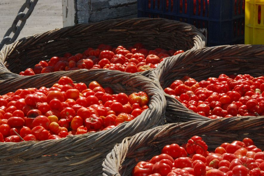 Santorini boasts plenty of light and delicious produce, such as capers, cherry tomatoes and juicy white ...