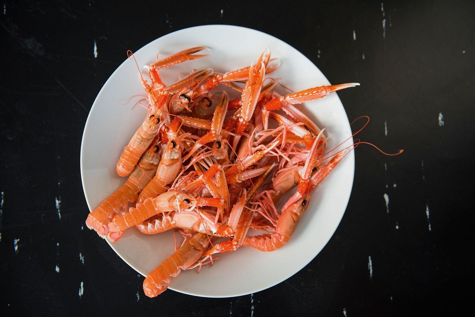 A dish of Hebridean langoustines.