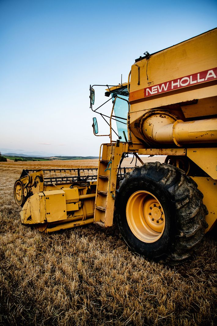 Tractor working barley fields