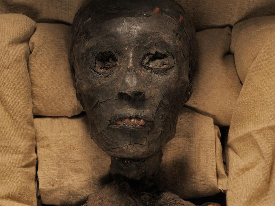 Tutankhamen's Grisly Family Tree