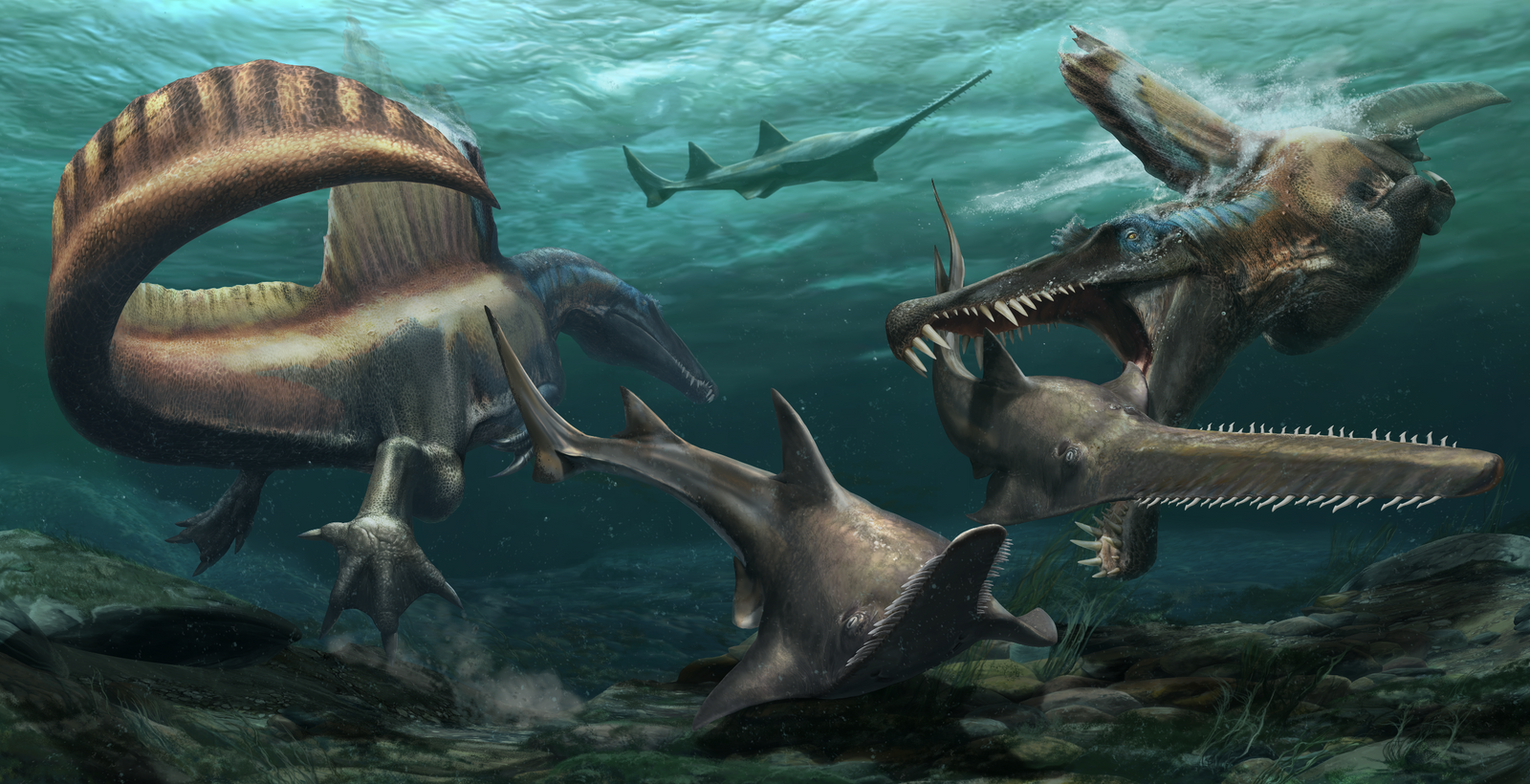 Exclusive: Bizarre Spinosaurus makes history as first known swimming dinosaur