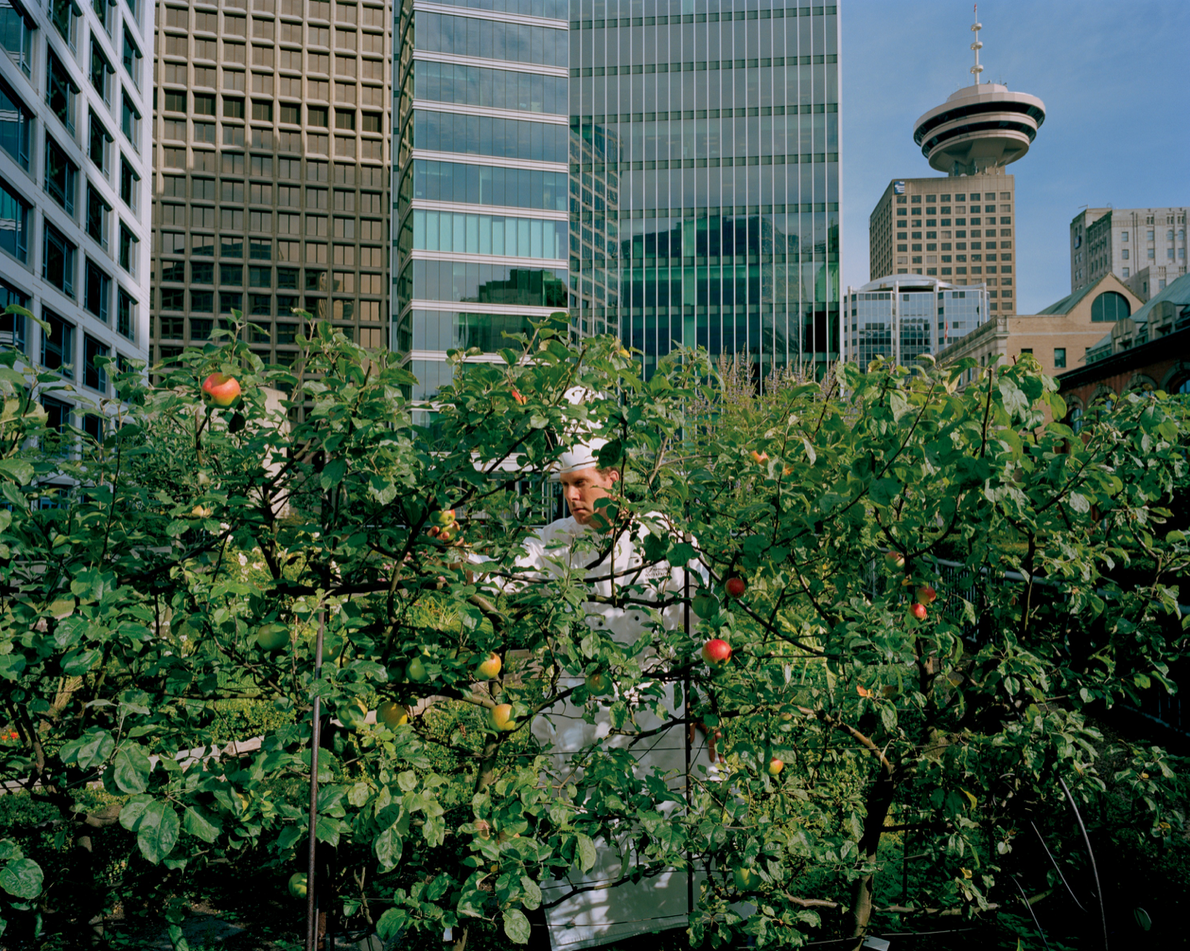 A story in the May 2009 issue looked at the growing trend of rooftop gardens around ...