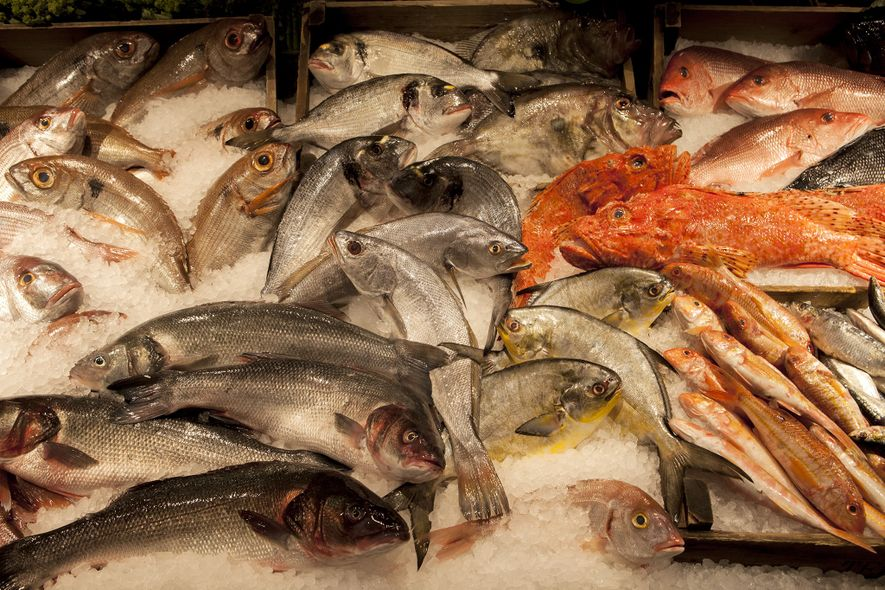 Fresh fish lie ready to be cooked and served at Montreal's Estiatorio Milos.
