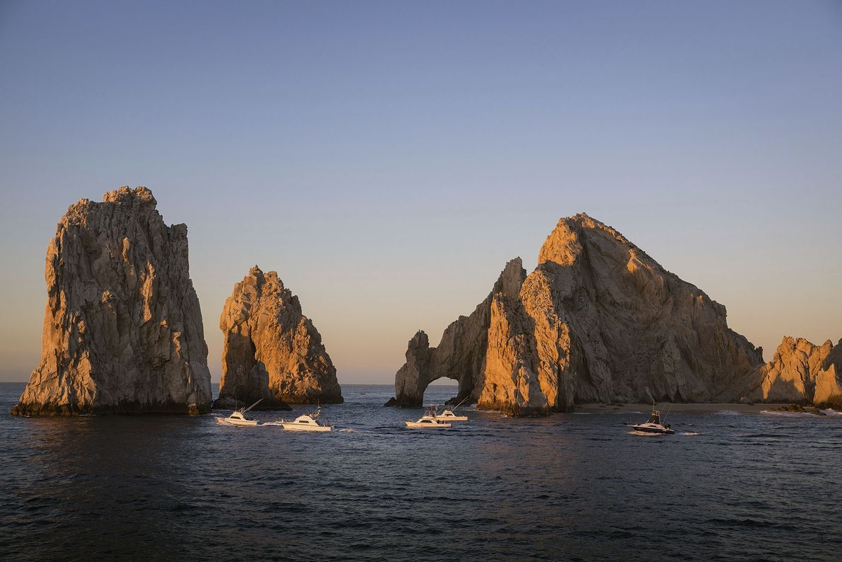 Searching for whales in Baja California's Sea of Cortez
