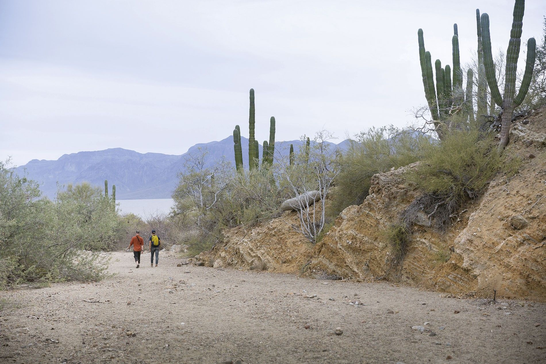 Walking back to the beach on San Jose Island in the Sea of Cortez.