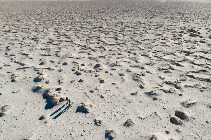 SETI Institute scientists, funded by NASA, gather data in the Chilean desert that will inform the ...