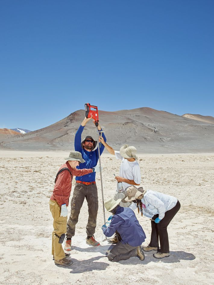 The Salar de Pajonales, a dry gypsum lake bed in the Chilean Altiplano, is one of ...