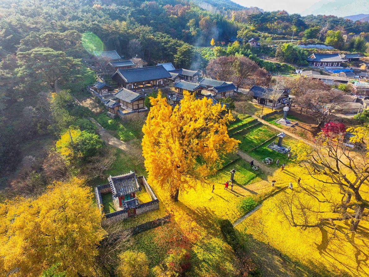 Seowon, Korean Neo-Confucian Academies, Korea