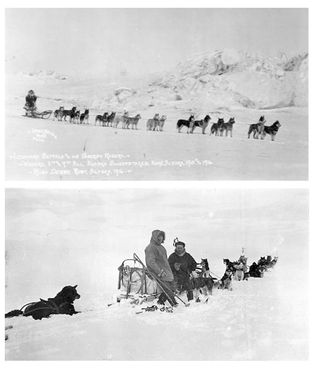Leonhard Seppala pictured with his 'Siberian Racers' in 1916 (top) and in 1923, with Norwegian explorer ...