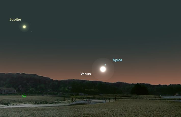 Venus and Spica will huddle close together near the horizon on 1st September.