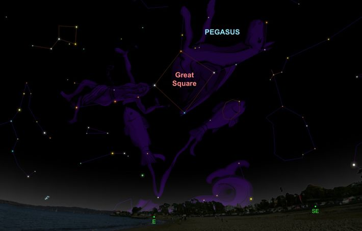 Look for the constellation Pegasus rising in the northwest on 30th September.