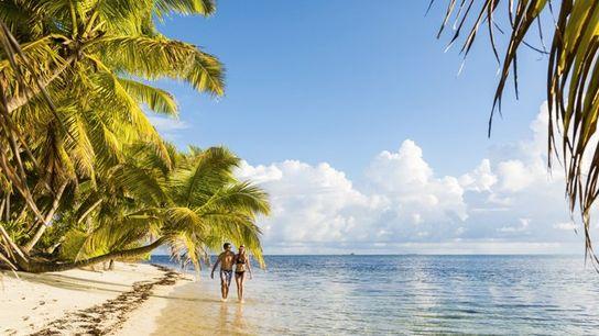 The beachfront of Alphonse Island Resort