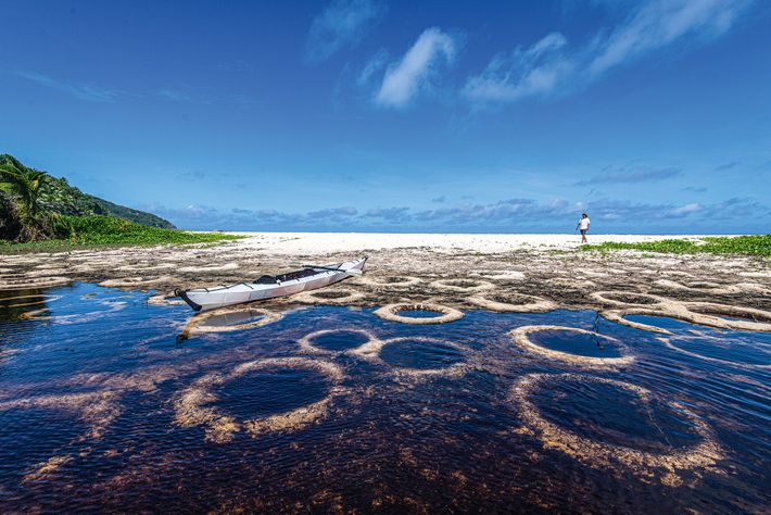 Franky Baccus from White Sands Adventures tours Police Bay on Mahé, where rain creates circular impressions in ...