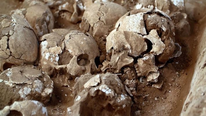 Archaeologists have discovered 80 severed heads in pits under the city walls. All the victims were ...