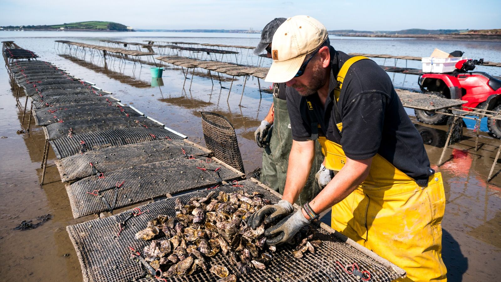 Andy Woolmer, owner of Atlantic Edge Oysters, believes that shellfish delivers in terms of taste, health, ...