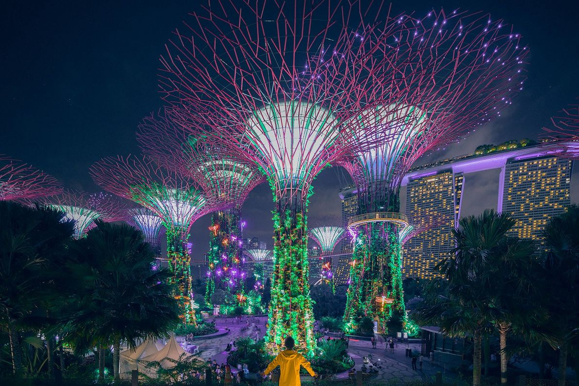 Singapore is amazing! Especially in the night. Honestly, I have never seen any city that looks ...