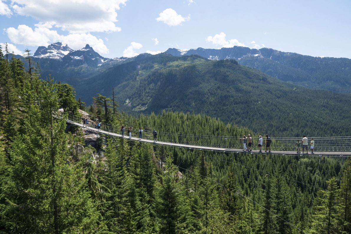 The Sky Pilot Suspension Bridge gives you a feeling of flying over the gorge below.