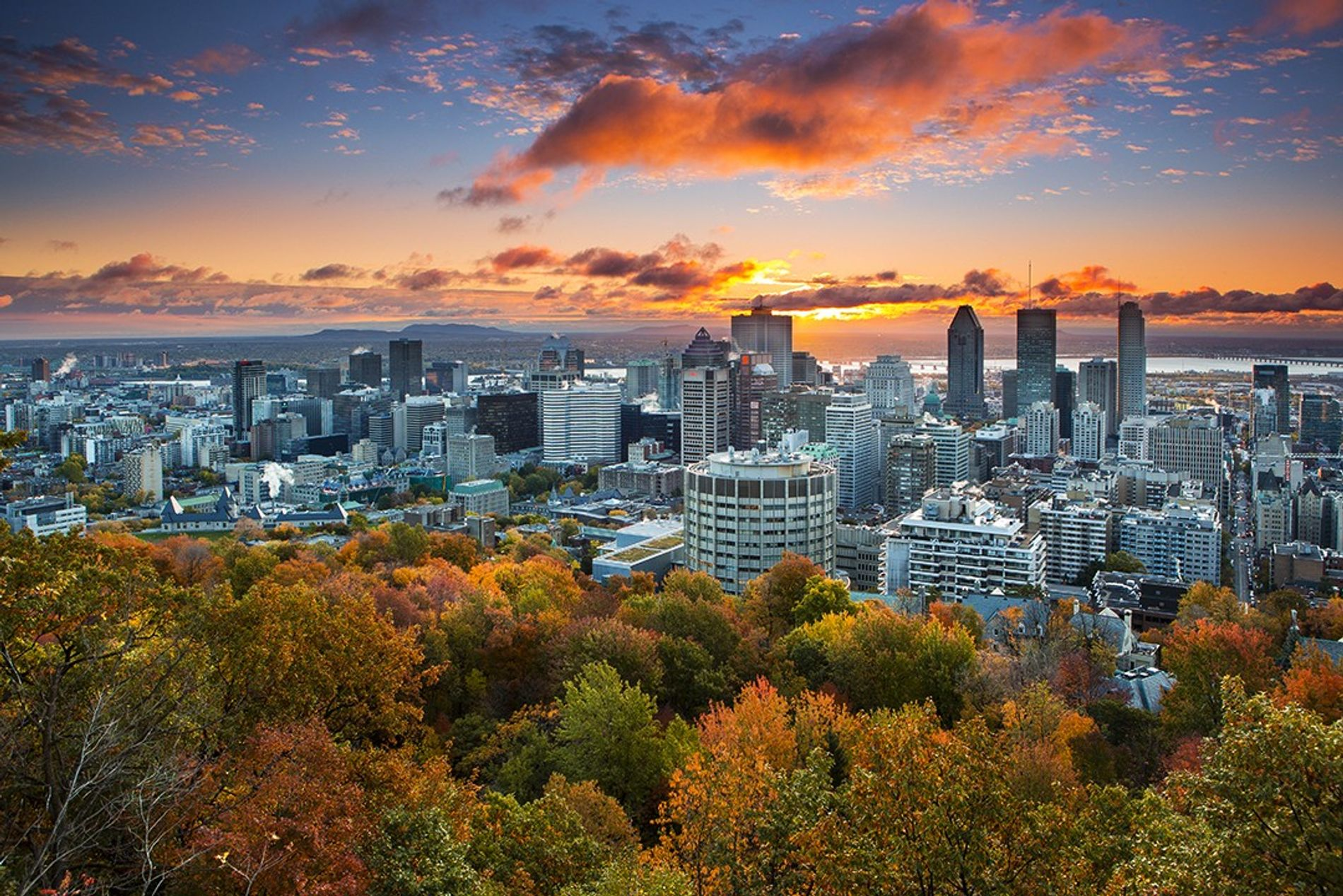 The dramatic skyline of Montreal at sunset from Kondiaronk Lookout on Mount Royal Park.