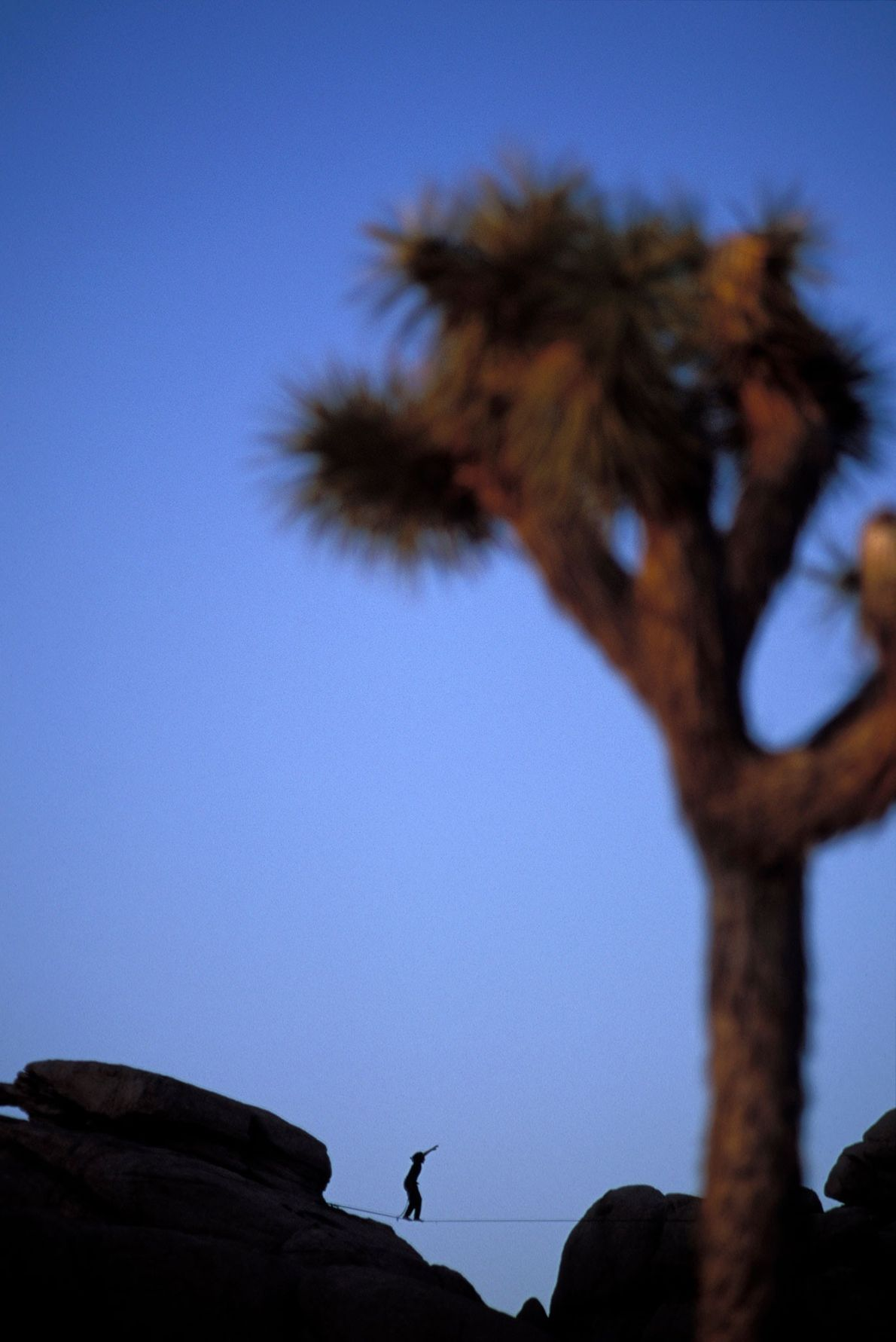 Joshua Tree National Park remains largely undeveloped and is a perfect place to test your slackline ...