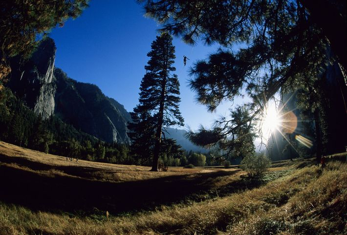 Yosemite Valley, the place where slacklining was begun by rock climbers some 40 years ago, is ...