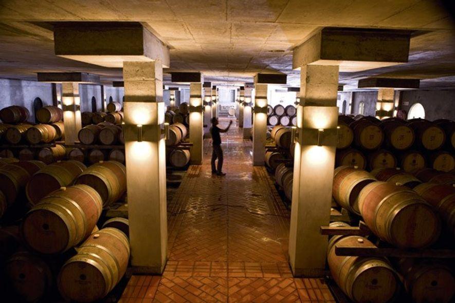 Sternberg Farm's wine cellar