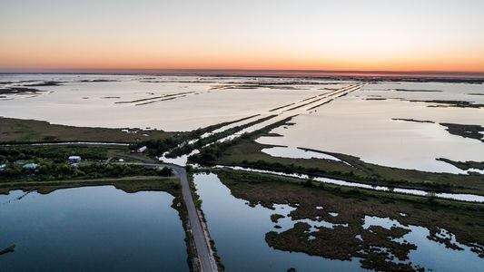 As climate change alters beloved landscapes, we feel the loss