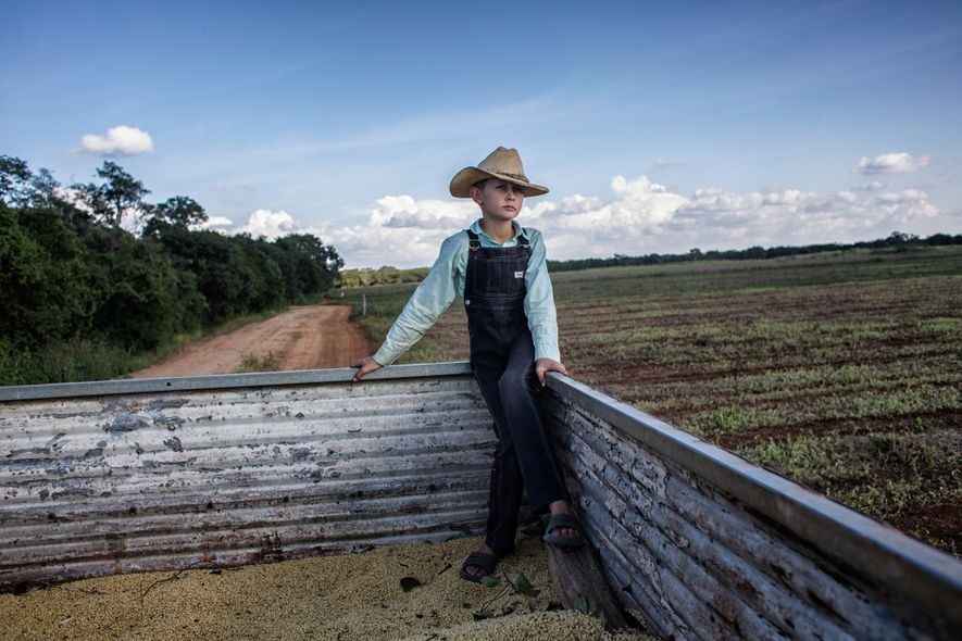 A 10-year-old Mennonite boy named Peter rides in his father's truck with last fall's soy harvest. ...