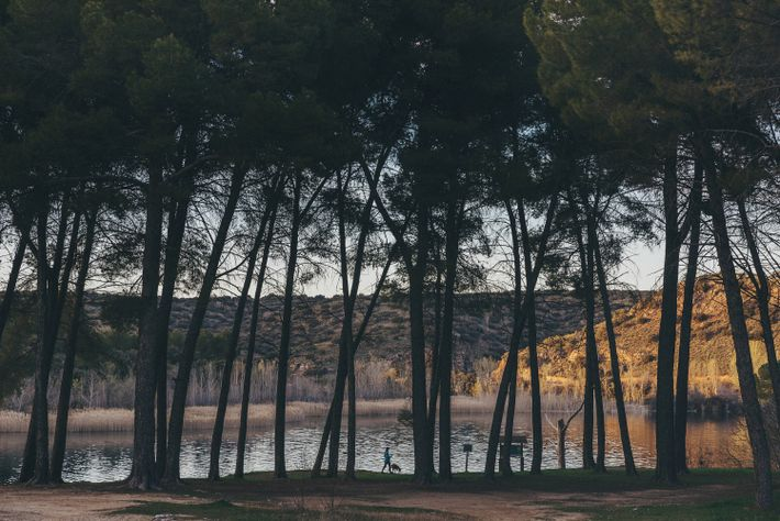 Late afternoon at Laguna de Batanas, a lake in Lagunas de Ruidera Natural Park.