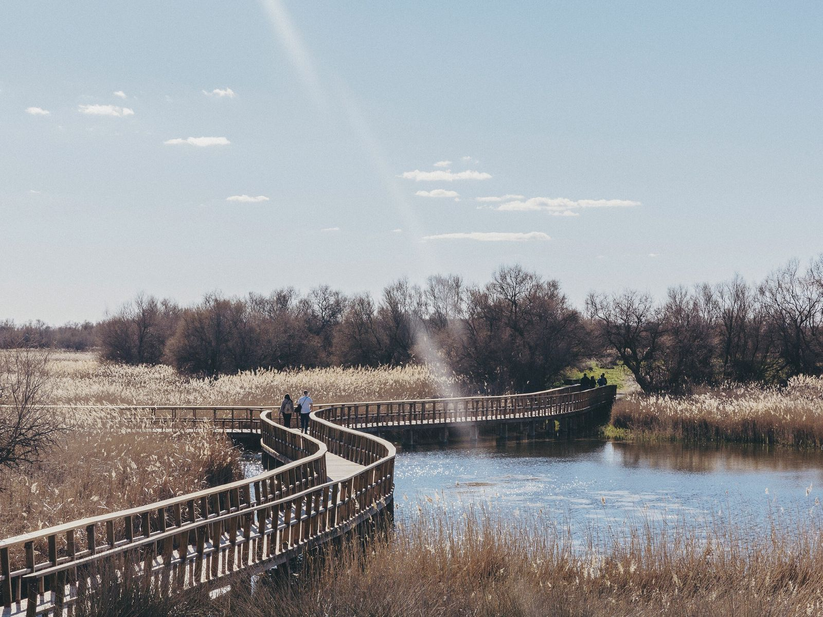 A boardwalk over wetlands at the Tablas de Daimiel National Park, Castile-La Mancha.