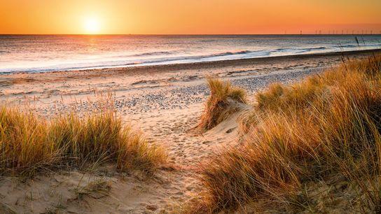 Sand dunes at Winterton-on-Sea.