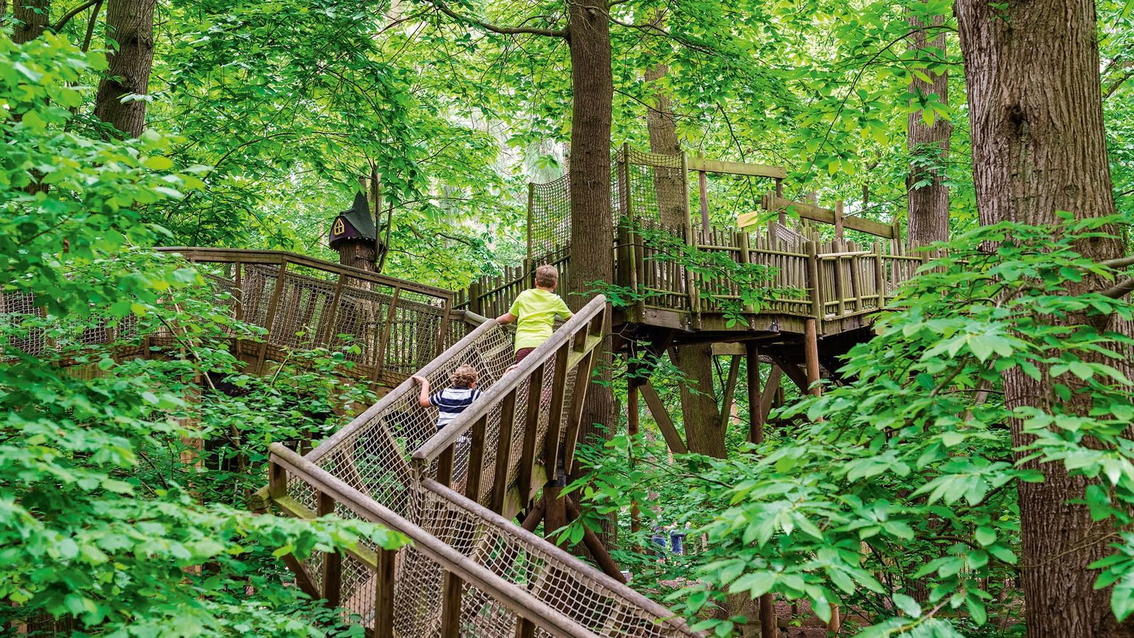 The BeWILDerwood forest attraction offers a wealth of adventurous activities for families of all ages.