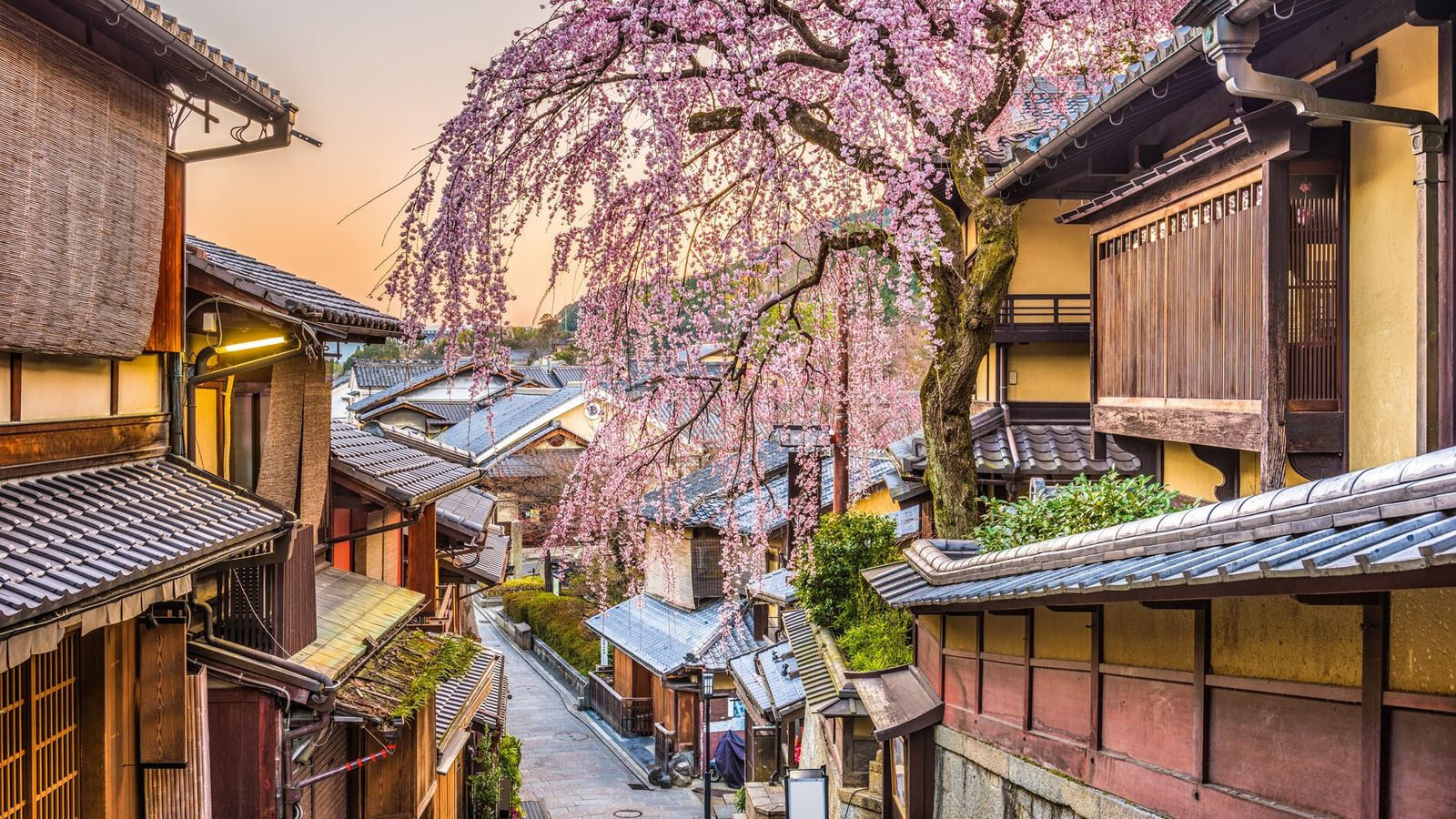 After a long day of soaking up the city's culture, Kyoto offers many relaxing teahouses to unwind ...