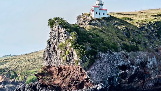 The lighthouse at Taiaroa Head, at the end of the Otago Peninsula. With rich wildlife and ...