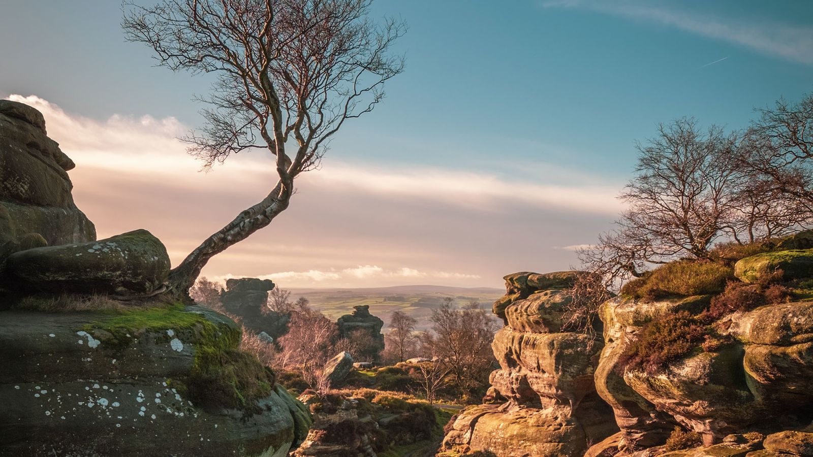 Natural rock formations at Brimham Rocks. The sandstone formations have been shaped by millions of years of ...