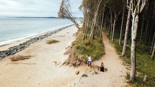 When walking through Courtown Woodland in Wexford, Ireland, travellers may come across one of the world's oldest operational lighthouses, which ...
