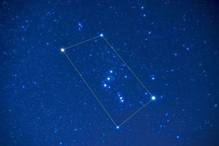 Orion, showing the cardinal stars. Star Count is asking observers to count and log the number ...