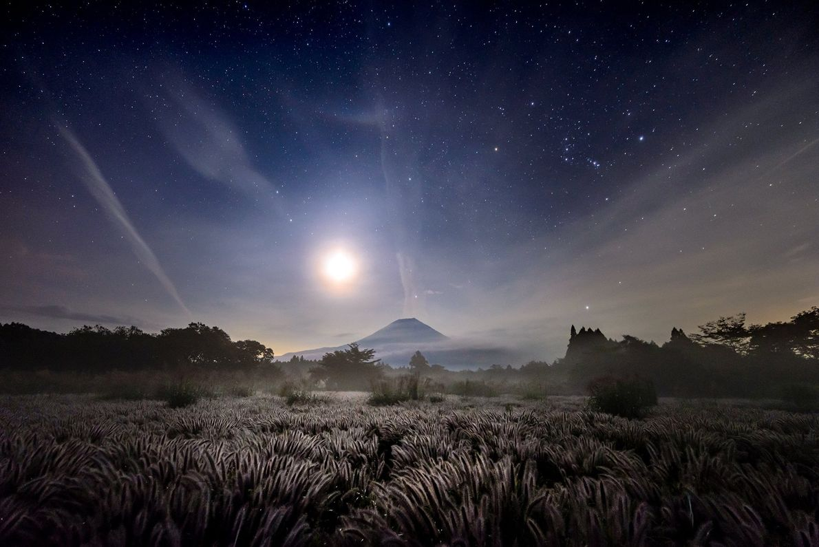 Backlit grassland leads to a mountain glowing under bright moonlight in front of Mount Fuji.