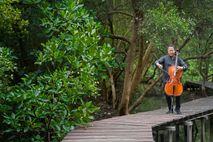 explore-05.21-yo-yo-ma-cello-trees-swamp