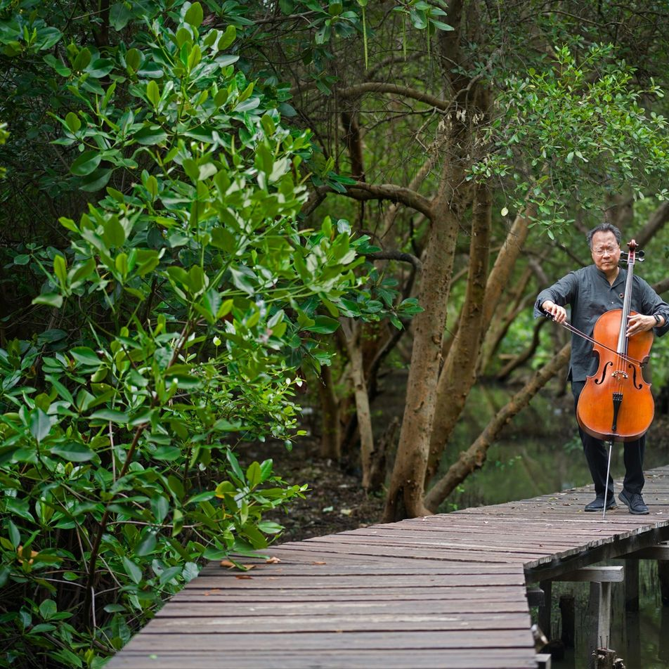 Why Yo-Yo Ma thinks culture and music can help protect the planet