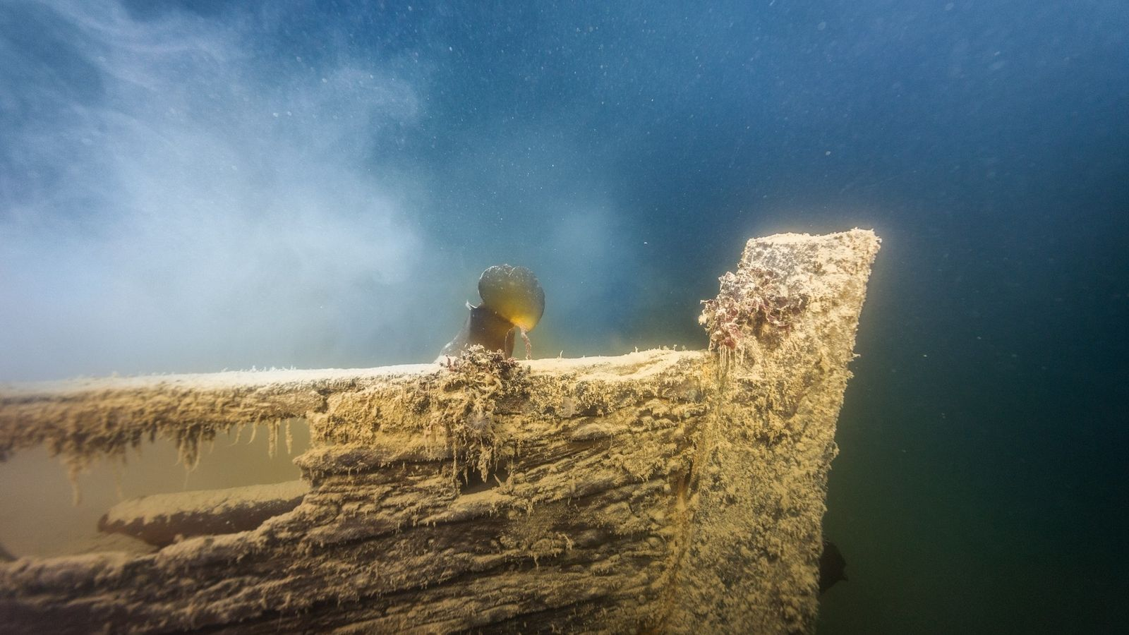 H.M.S.  Terror, one of two ships from the doomed Franklin expedition, was discovered in 2016 off ...